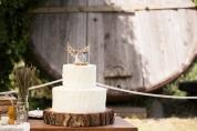Dettaglio del tronco vero, base della torta nuziale