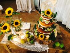Torta agrumi di Sicilia Case Perrotta