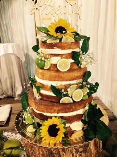 torta con agrumi Case Perrotta